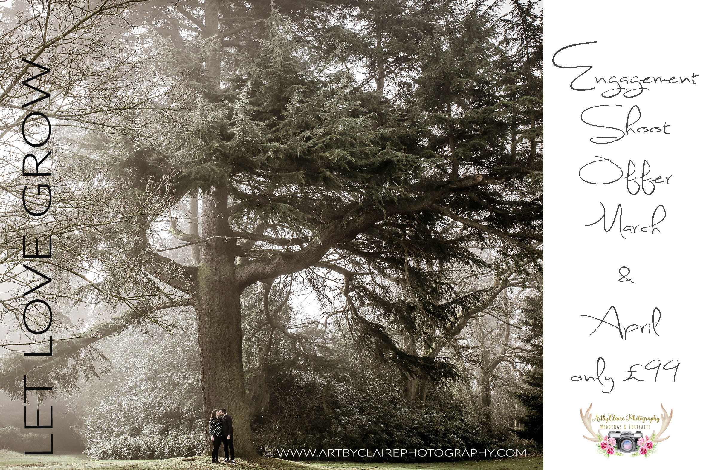 ArtbyClaire Photography Engagement Shoot offer